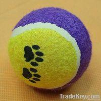 Pet Playing Tennis Ball