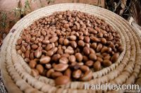 Argan Oil: for Cosmetic Use . USDA ECOCERT