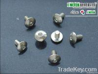 SUS304 Truss Head Socket Machine Screw