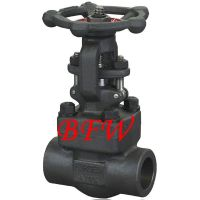 Cast steel and Cast iron  ANSI& DIN gate valve