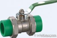 PPR valve