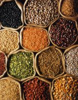 GRAINS & PULSES