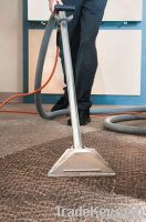 Green Carpet Cleaners