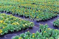 Made in China hot selling custom made pp anti-weed mat for garden