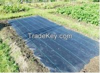 New product custom made pp weed control fabric for garden