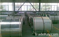 PPGI Steel Coils Pure White