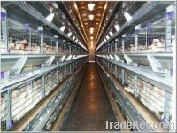 automation equipment for raising all kinds of chickens