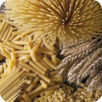 Premium Quality Spagetti