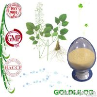 Top Quality Epimedium Extract Icariin with Competitive Price