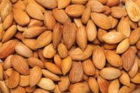 Almond Nuts Quality Raw Almond Nuts