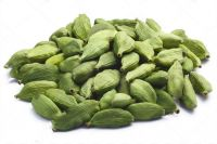Green Cardamom Dried Cardamom Grade A Large 88ml