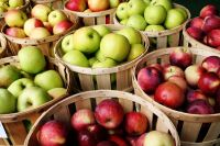 Apples, Fresh Apple/Apples Fruits 99% Quality