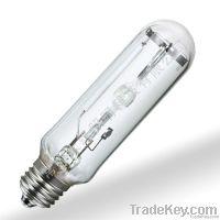 Outdoor Street Light Bulb