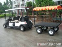 Golf Buggy 2to 23 Seater