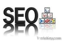 ecommerce website search engine ranking service