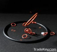 Silicone seals and gasket