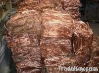 Copper Wire Scraps Suppliers | Copper Scrap Exporters | Copper Scrap Manufacturers | Cheap Copper Scrap | Wholesale Copper Scraps | Discounted Copper Scrap | Bulk Copper Scraps | Copper Scrap Buyer | Import Copper Scrap | Copper Scrap Importers | Copper S