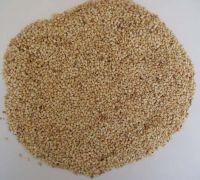 Sesame seed & Sesame oil