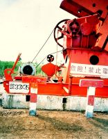 Oil Pump Tension Belt