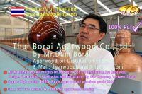 oud oil-gaharu oil-agarwood oil