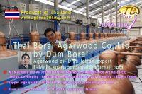 Agarwood-aloeswood-oud-oudh-gaharu oil