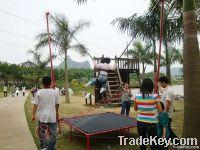 electric single bungee trampoline