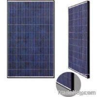 Canadian Solar CS6P-235PX 235 Watt Solar Module Pallet Qty 24