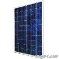 Suntech STP225-20/Wd 225 Watt Solar Module Pallet Qty 21