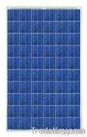 Conergy CGY-50102, PH 240 Watt Poly Solar Panel, Pallet of 22