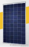 SolarWorld Sunmodule SW 235 poly Solar Photovoltaic (PV) 235 Watt Pane
