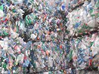 PET Bottles scraps 98/2
