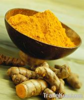 Karnaphuli Turmeric Powder