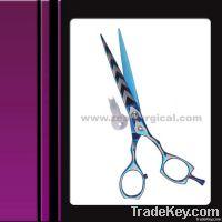 Titanium coated scissor