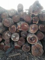 Metacha Wood