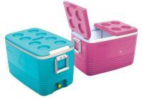 6olt Cooler Box