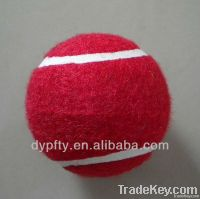 itf tennnis ball pet ball promotion