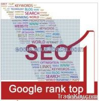 professional high quality seo promotion services