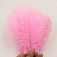 QUALITY OSTRICH FEATHERS FOR CENTERPIECE AND DUSTER.