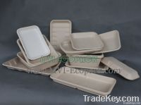 Disposable Bagasse Supermarket Tray