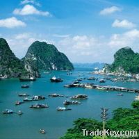 Trip to Halong bay, Visit Halong bay with cruise