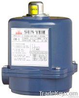 Quarter-turn Electric Actuator