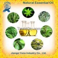 Chinese Essential Oils Wholesale Price Supplier and Exporter