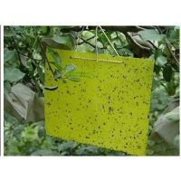 Thrips Whitefly Glue Paper