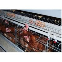 Chicken Cage Hen Coop Poultry Chicken Cage