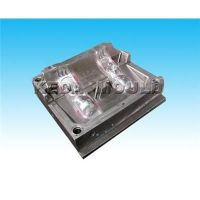 Plastic Injection Blow Mould Mold