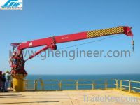 25T14M Hydraulic Telescopic Boom Marine Crane