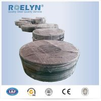 High precision Cold Rolled Steel Strips 0.05-0.1mm*5mm-400mm