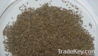 cumin seeds, anil seeds, corianda seeds
