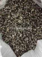Moringa Oleifera Seed (Drumstick Seed)