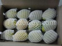 FRESH INDIA MANGO- BEST QUALITY OF ROYAL